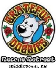 Grateful Doggies Rescue Link